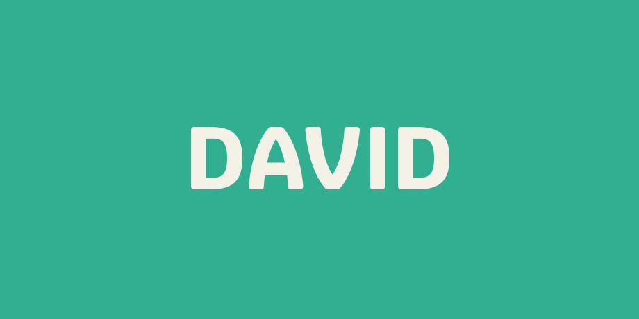 Logo-David.png#asset:975
